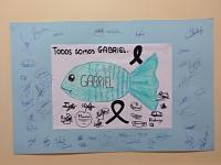 Pez solidario en apoyo al niño Gabriel.